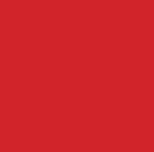 Feltro Vermelho Noel 065